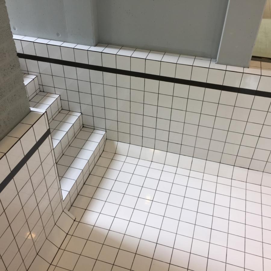 Droogzwemmen Maze de Boer 9