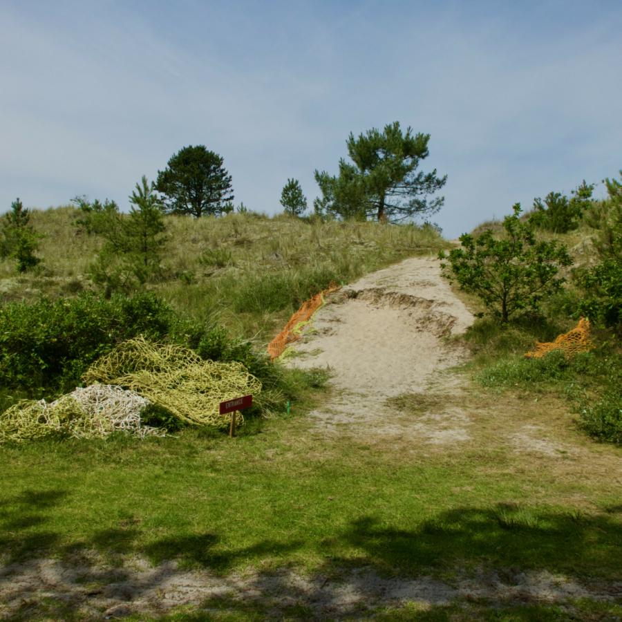 Under The Surface Maze de Boer 16